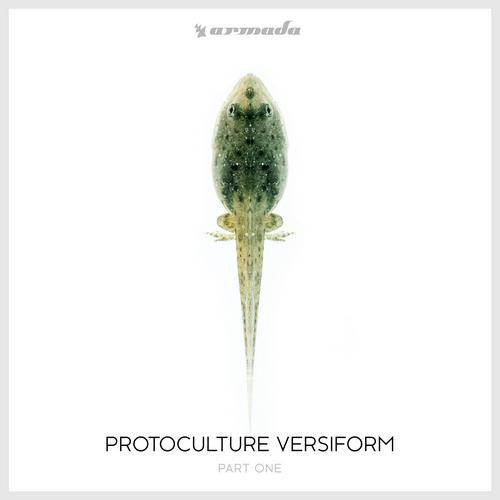 protoculture rpa dj set album tracklist compilation kompilacja spotify odsłuch słuchaj listen itunes pandora beatport download buy cost price cena